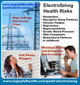 PEMF ElectroSmog Health Natural Remedy