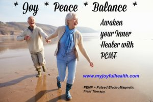 PEMF Price Joy Peace Balance Awaken Inner Healer