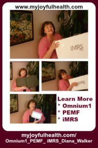 Omnium1 PEMF iMRS Diana Walker